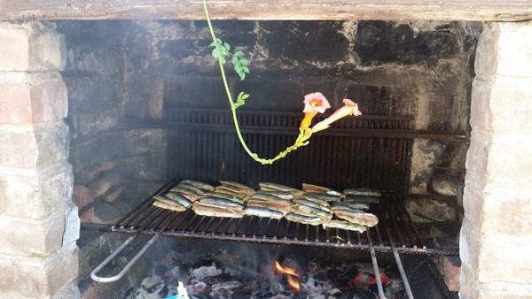 sardines-bbq