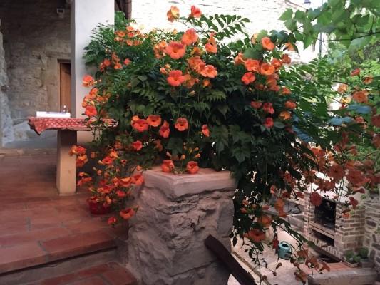 terrasse-bignogne